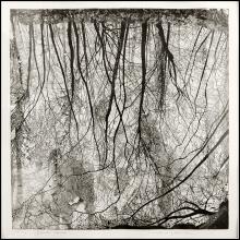 Federica Galli - Grande Lanca - 1980 - Acquaforte su zinco - 595 x 588 mm - Unico stato - Esemplare 16 tiratura 90 - Stamperia d'Arte di Corbetta - Firmata e numerata