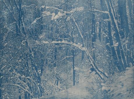 Winter-Drucknr.1-zugeschnitten